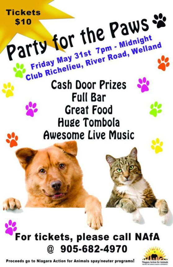party for the paws poster